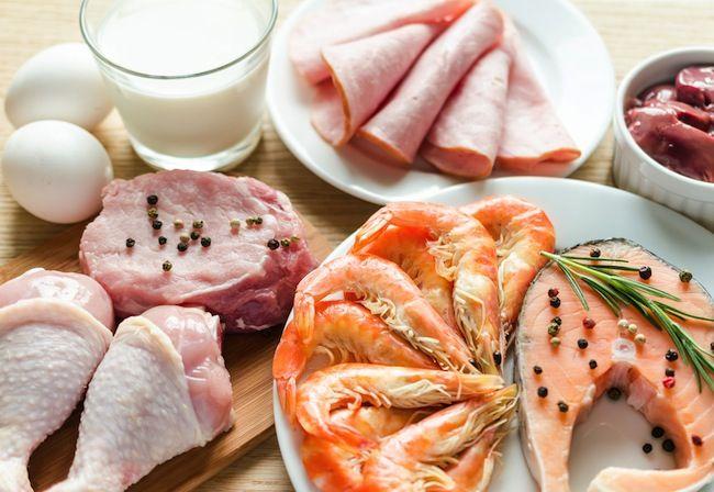 Dieta Chetogenica: origini e quali libri acquistare per saperne di più