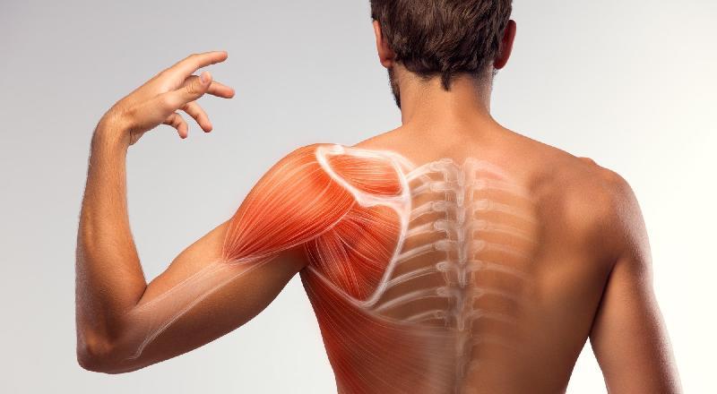 Lo strappo muscolare: cos�è e come si cura?