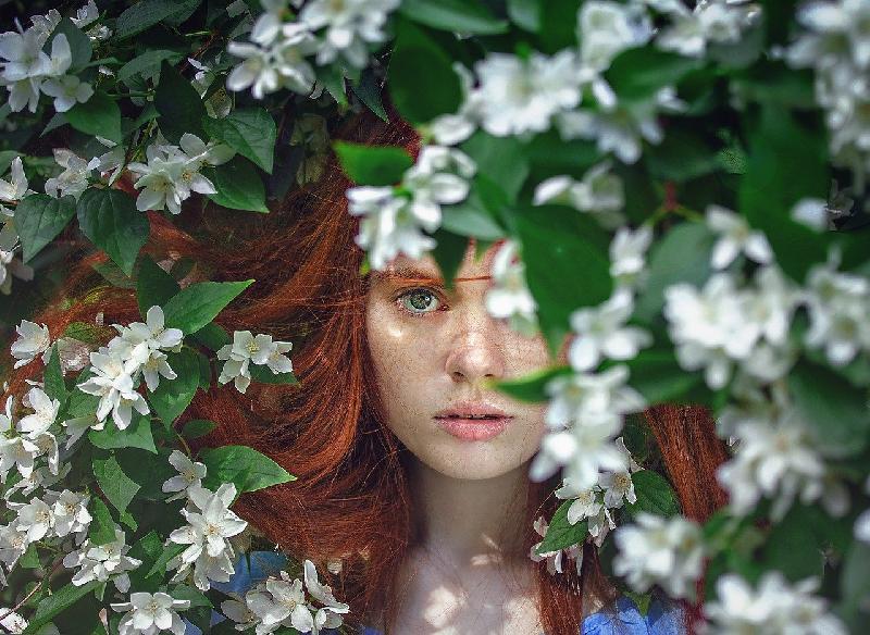 La natura guida le soluzioni colore: proposte vegetali per non danneggiare i capelli